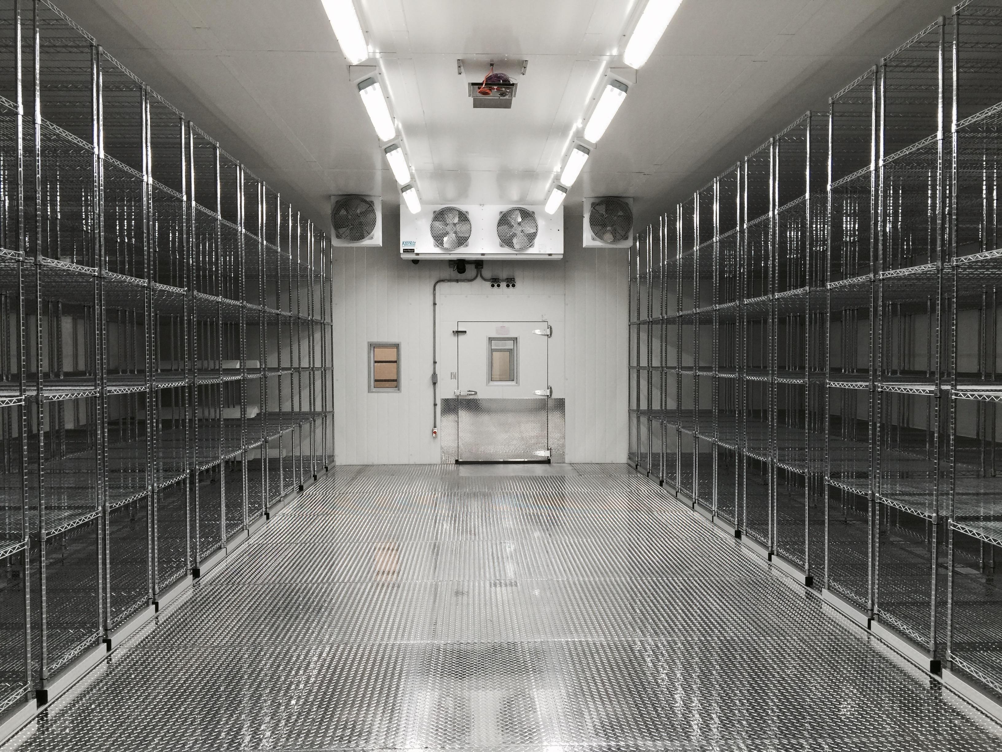 Cold Room in Biostorage Facility Masy